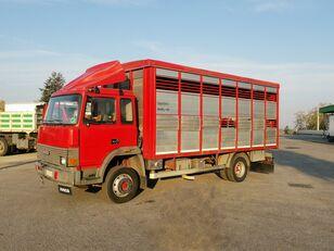camion bétaillère IVECO 135.14 Trasporto Animali 115qli